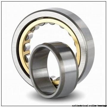 190 mm x 290 mm x 46 mm  NACHI NUP 1038 cylindrical roller bearings