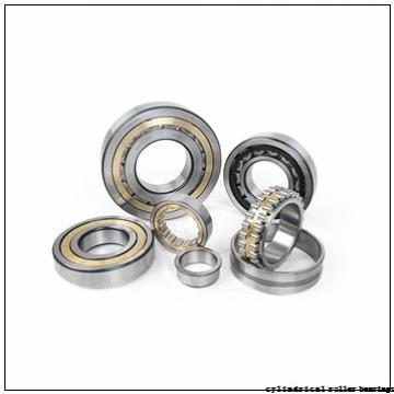 25 mm x 62 mm x 17 mm  NSK NU 305 EW cylindrical roller bearings