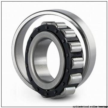 65 mm x 120 mm x 31 mm  NKE NCF2213-V cylindrical roller bearings